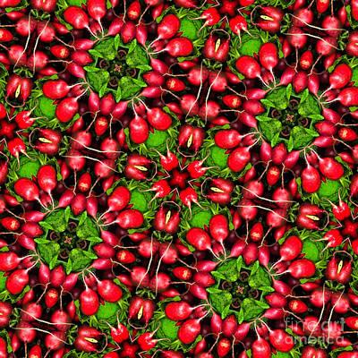 Kaleidoscope Radishes Poster by Amy Cicconi