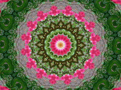 Kaleidoscope Roses In Pink And Green Poster by MM Anderson