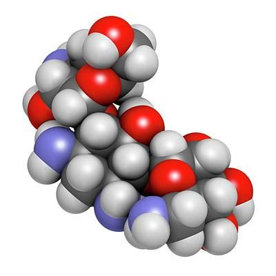 Kanamycin Antibiotic Drug Molecule Poster by Molekuul