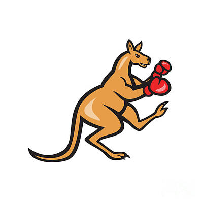 Kangaroo Kick Boxer Boxing Cartoon Poster by Aloysius Patrimonio