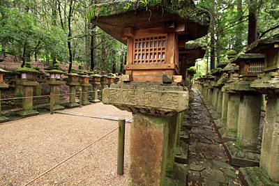 Kasuga Taisha Shrine In Nara, Japan Poster by Paul Dymond