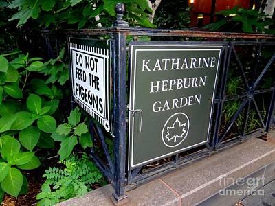 Katherine Hepburn Garden Poster