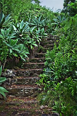 Kauai Stairway Poster
