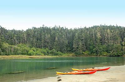 Kayak Adventure Awaits Poster by Donna Blackhall