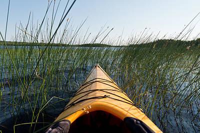 Kayaking Through Reeds Bwca Poster by Steve Gadomski