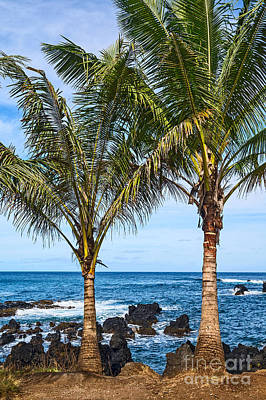 Keanae Palms - The Rugged Volcanic Coast Of The Keanae Peninsula In Maui. Poster