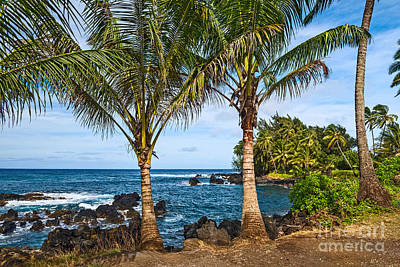 Keanae Paradise - The Rugged Volcanic Coast Of The Keanae Peninsula In Maui. Poster
