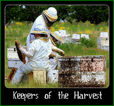 Keepers Of The Harvest Poster