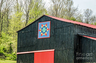 Kentucky Barn Quilt - 2 Poster by Mary Carol Story