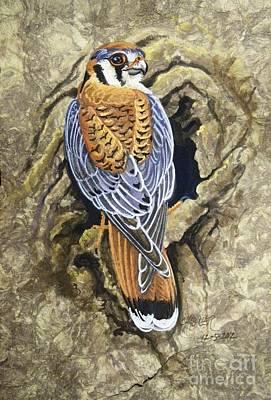 Kestrel Nesting Poster