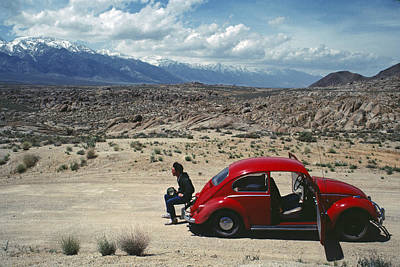 Poster featuring the photograph Kevin And The Red Bug by David Bailey