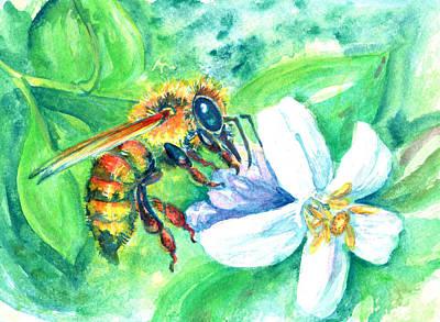 Key Lime Honeybee Poster