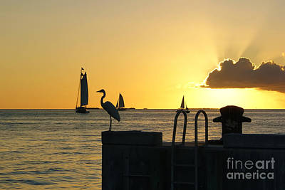 Poster featuring the photograph Key West Sunset by Olga Hamilton