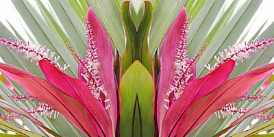 Key West Symmetry Poster