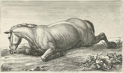 Killed Horse Lying On Stomach, Jan Van Huchtenburg Poster by Jan Van Huchtenburg And Adam Frans Van Der Meulen