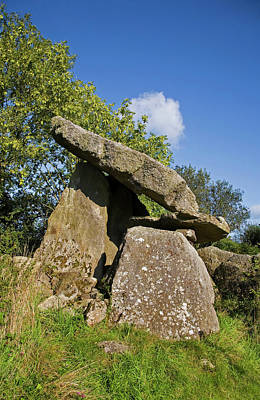 Kilmogue Megalithic Tomb, Harristown Poster by Panoramic Images