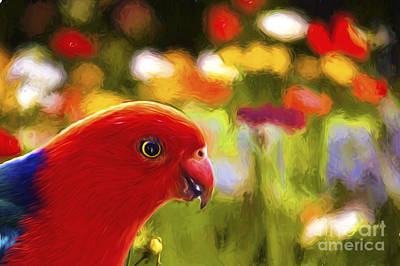 King Parrot With Flowers Poster