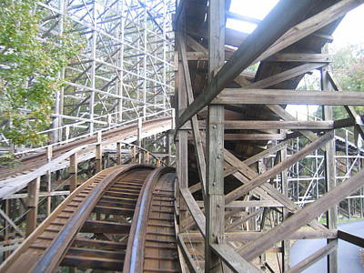 Kings Dominion - Grizzly - 01132 Poster by DC Photographer