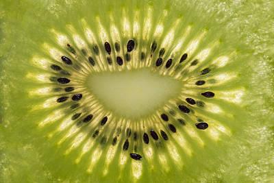 Kiwi Detail Poster by Steve Gadomski