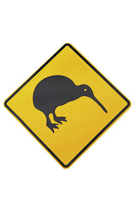Kiwi Warning Sign, New Zealand Poster