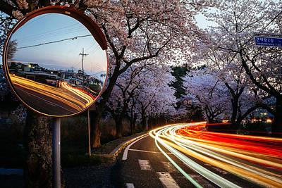 Korea's Roadside Blossoms Poster