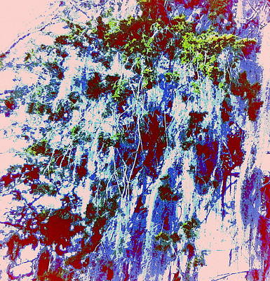Kunoichi Gardens Poster