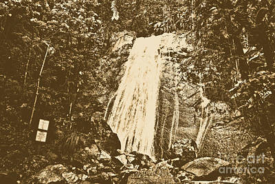 La Coca Falls El Yunque National Rainforest Puerto Rico Print Rustic Poster by Shawn O'Brien