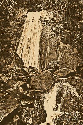 La Coca Falls El Yunque National Rainforest Puerto Rico Prints Rustic Poster by Shawn O'Brien