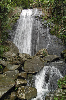 La Coca Falls El Yunque National Rainforest Puerto Rico Prints Poster by Shawn O'Brien