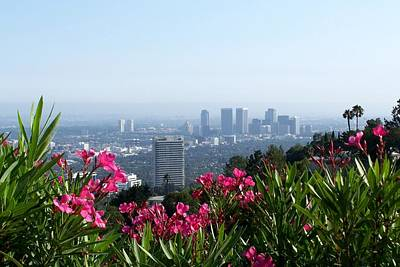 Poster featuring the photograph L.a. From Beverly Hills by Dany Lison