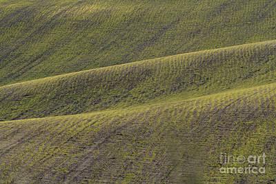 La Mancha Landscape - Spain Series-dos Poster by Heiko Koehrer-Wagner