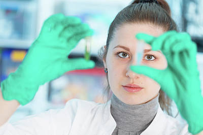 Lab Assistant Holding Samples Poster