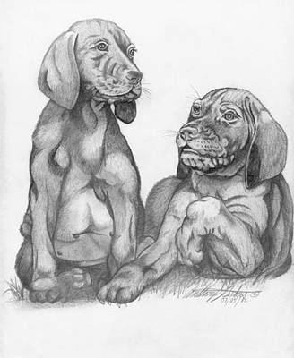 Labrador Retriver Puppies Poster