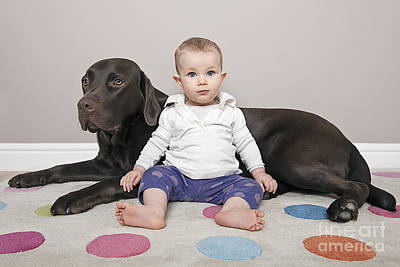 Labrador With Baby Girl Poster by Justin Paget