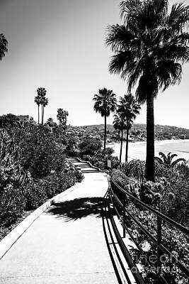 Laguna Beach Heisler Park In Black And White Poster by Paul Velgos