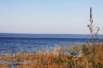 Poster featuring the photograph Lake Apopka 2 by Chris Thomas