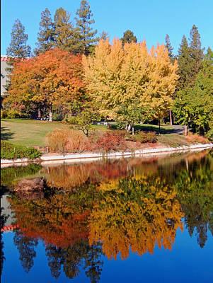 Lake At Davis Poster