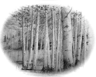 Poster featuring the drawing Lake Birches by Jim Hubbard