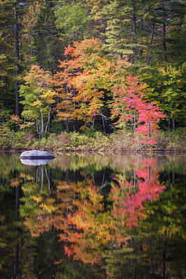 Lake Chocorua Moment Of Reflection Poster