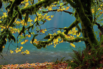 Lake Crescent, Olympic National Park Poster