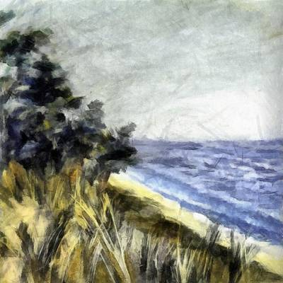 Lake From The Dunes Poster by Michelle Calkins