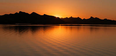 Poster featuring the photograph Lake Havasu Sunrise by Avian Resources