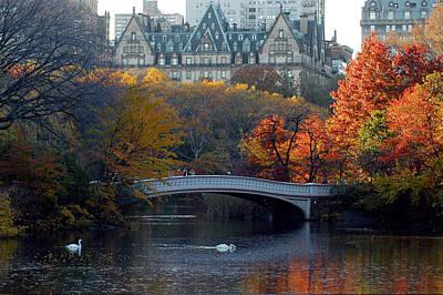 Lake In Central Park Poster