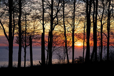 Lake Michigan Sunset With Silhouetted Trees Poster