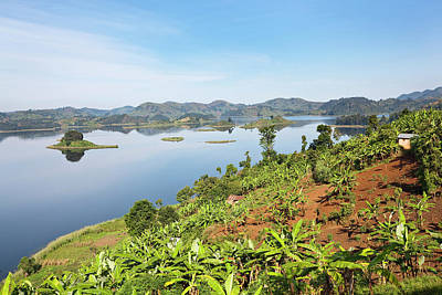Lake Mutanda Near Kisoro In Uganda Poster by Martin Zwick