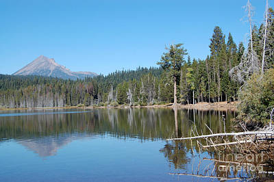 Poster featuring the photograph Lake Of The Woods 4 by Debra Thompson