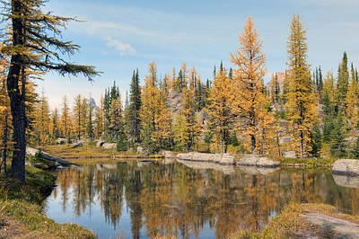 Lake Ohara Alberta Canada Poster