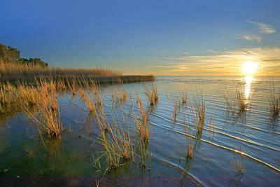 Lake Pontchartrain At Sunset Louisiana Poster by Tim Fitzharris