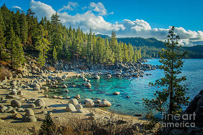 Lake Tahoe Hidden Cove Poster by Janis Knight