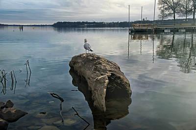 Lakeside Poster by Steven  Michael